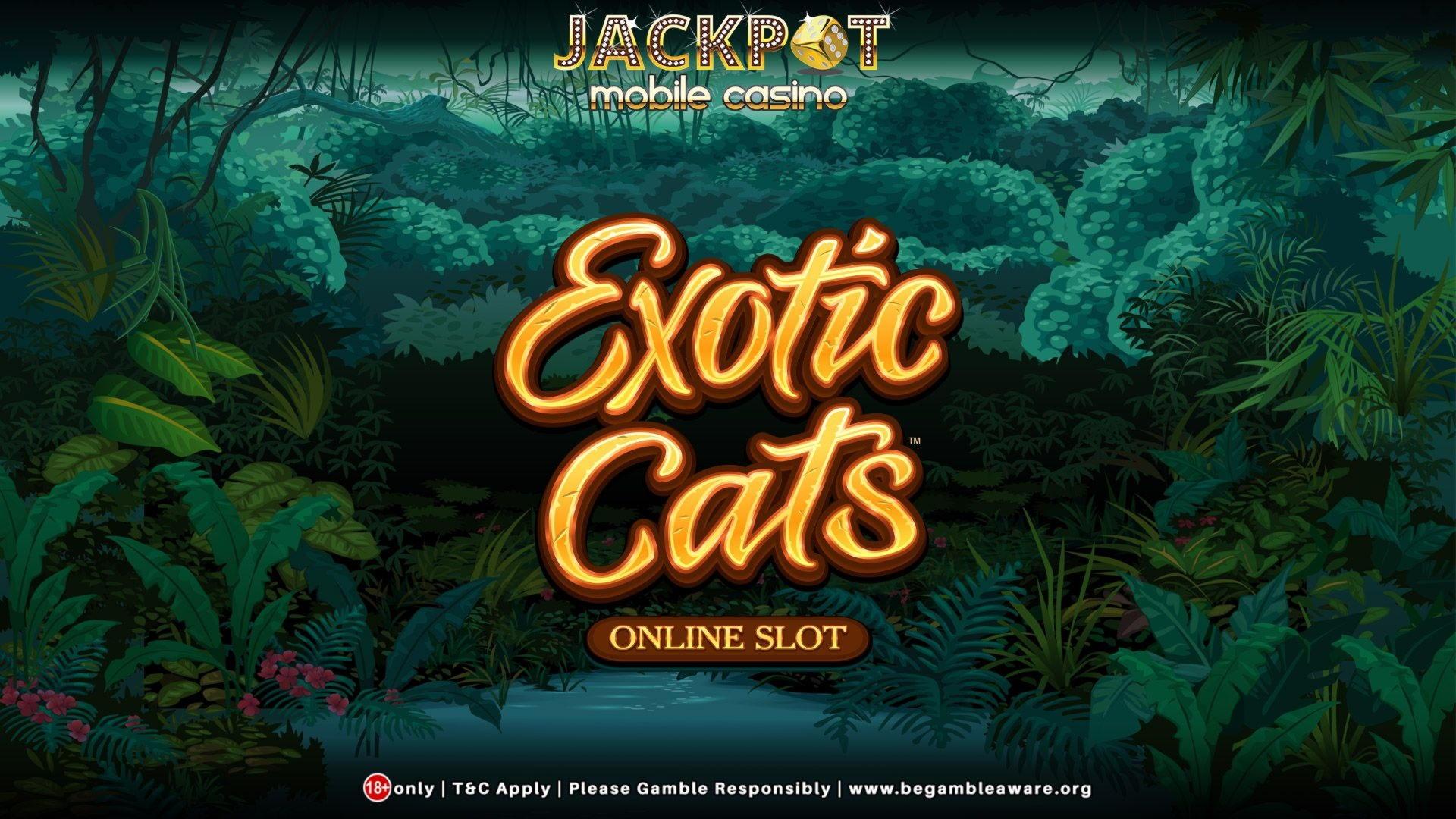 Eur 3350 ingen indbetaling på Treasure Island Jackpots Casino (Sloto Cash Mirror)